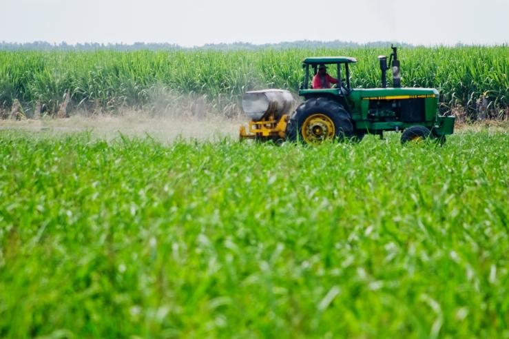 agroindustria_0 (1)